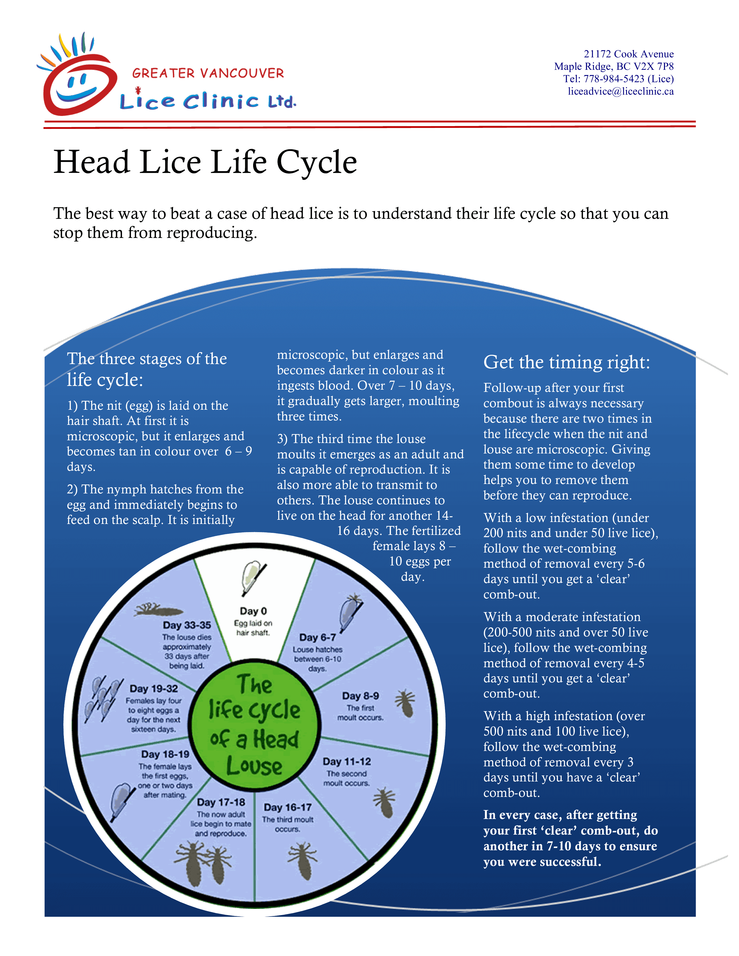 life cycle of lice